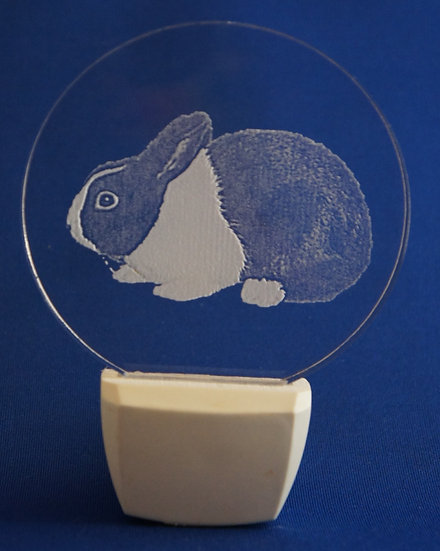 Dutch rabbit Night Light