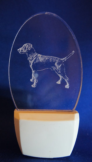 German Pinscher Night Light