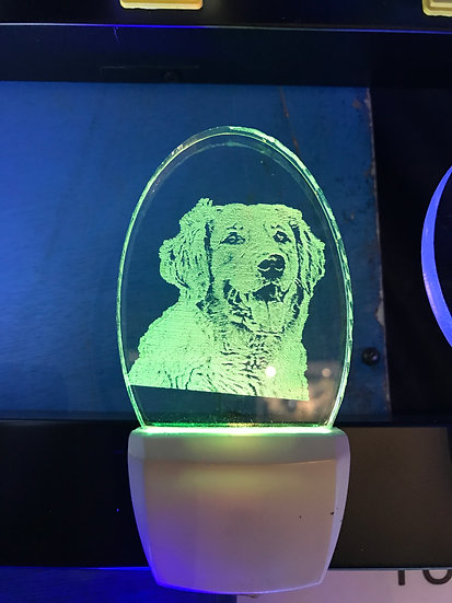 Golden Retreiver Night Light