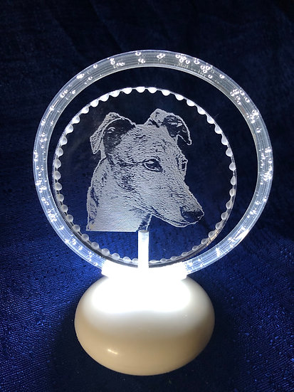 Greyhound head halo illuminated