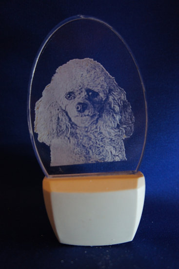 Miniature Poodle Night Light