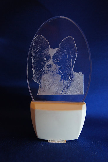 Papillon Night Light
