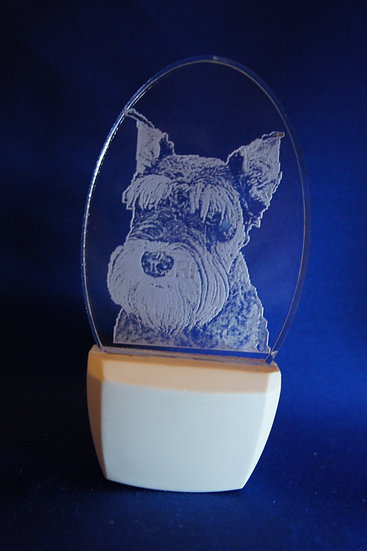 Schnauzer cropped ears Night Light
