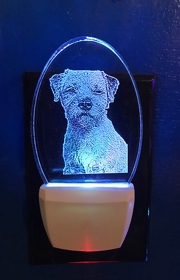 Border Terrier Dog Night Light