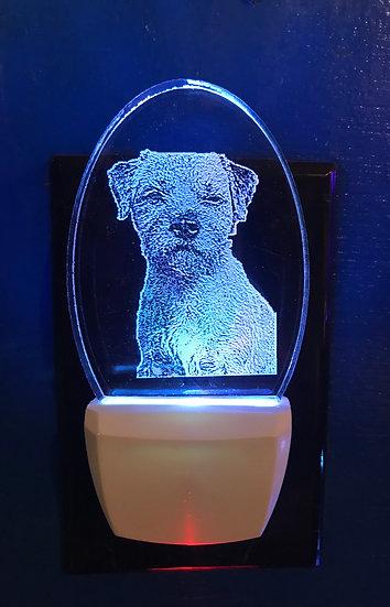 Border Terrier Dog Night Light