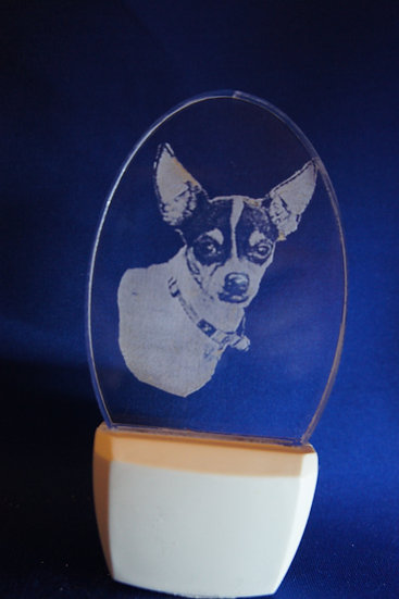 Rat Terrier Night Light