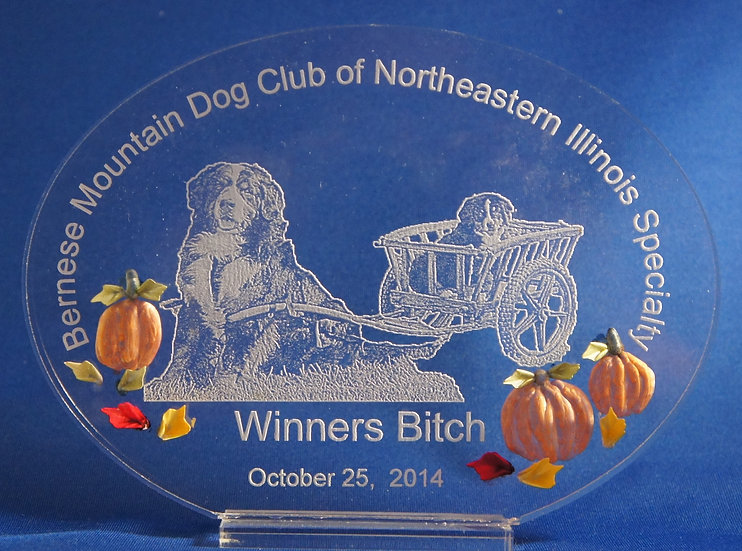 Side Oval trophy/ Award
