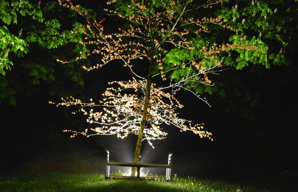 External garden  lighting design