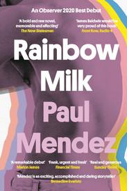 Paul Mendez -Rainbow Milk (Dialogue Books)