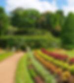 20840781-hermosa-tropical-real-jardín-b