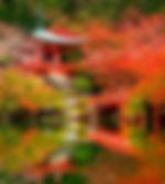 Kioto-Japon.jpg
