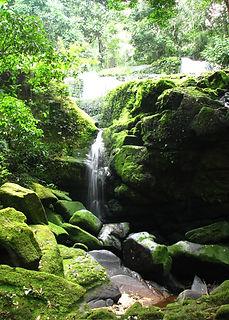 Waterfall_ivindo_gabon.jpg