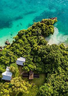 thumb-story_0019_Tanzania_coastforest_sh