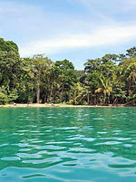 top-5-things-to-do-in-puerto-viejo-costa