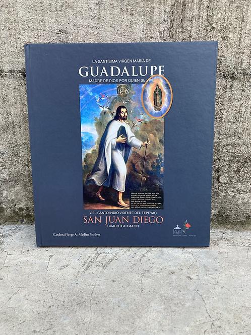 LA SANTISIMA VIRGEN MARIA DE GUADALUPE Y JUAN DIEGO