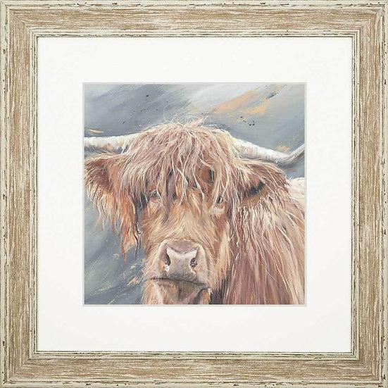 Bonny Cow 48cm Square Framed Print