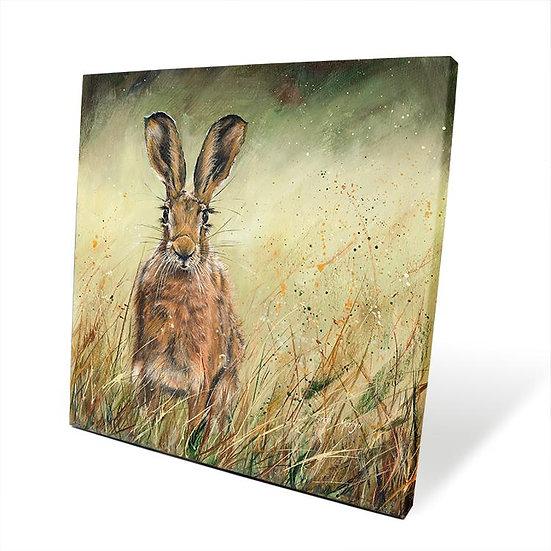 Heidi Hare 40cm Box Canvas
