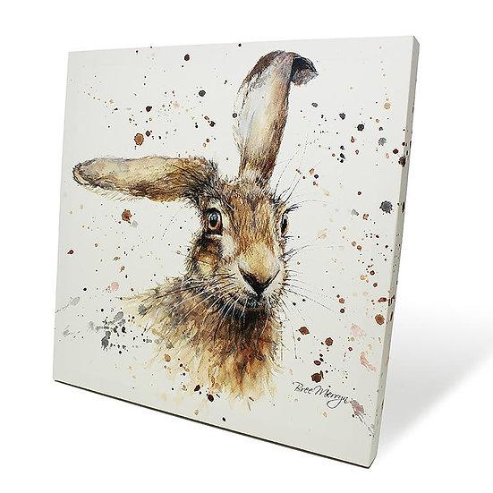 Harriet Hare 40cm Box Canvas