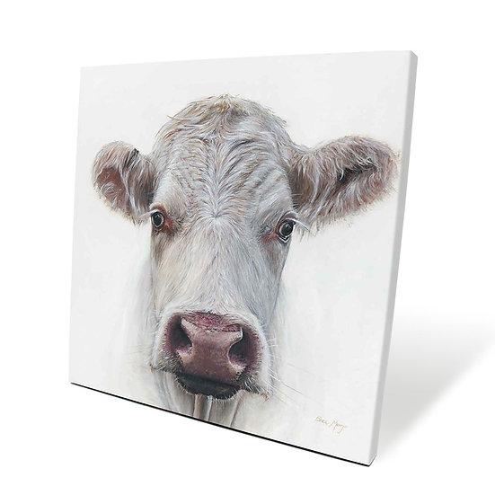 Lily Cow 40cm Box Canvas