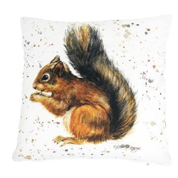 Sunny Squirrel Luxury Feather Cushion - Bree Merryn