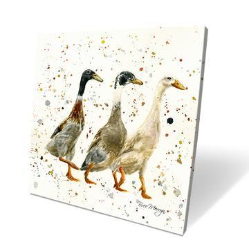 Three Ducks 40cm Box Canvas
