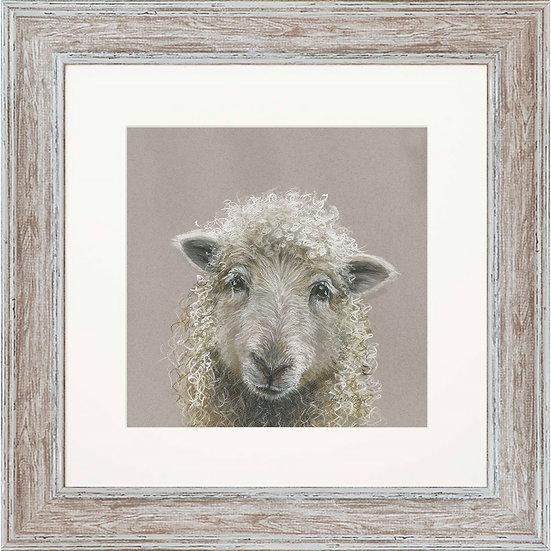 Suzy Sheep 48cm Square Framed Print