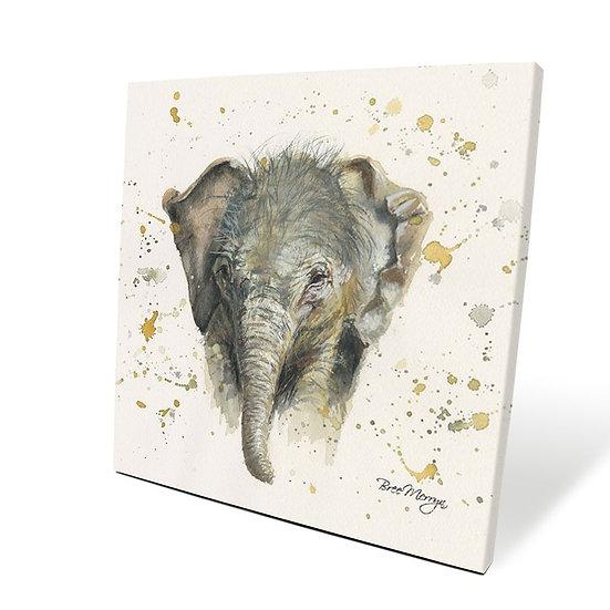Eliza Elephant 40cm Box Canvas