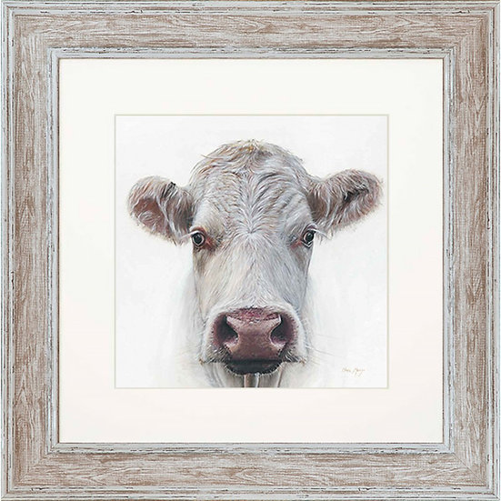 Lily Cow 48cm Square Framed Print