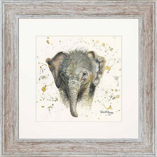 Eliza Elephant 48cm Square Framed Print
