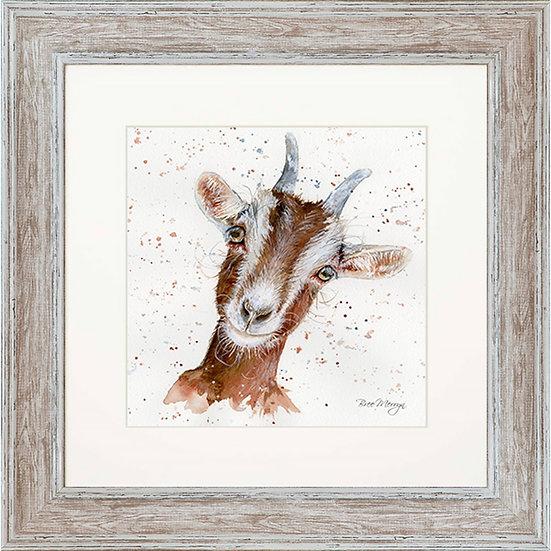 Gideon Goat 48cm Square Framed Print