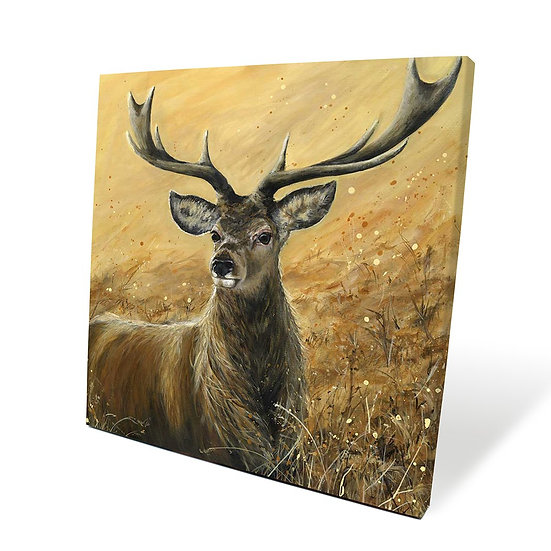 Sterling Stag 40cm Box Canvas