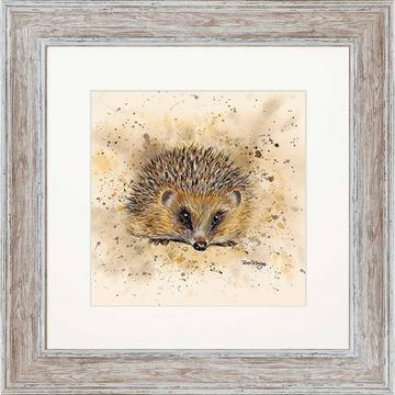 Harley Hedgehog 48cm Square Framed Print