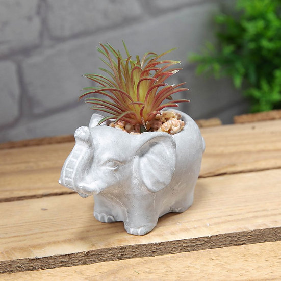 Mini Cement Elephant Planter with succulent