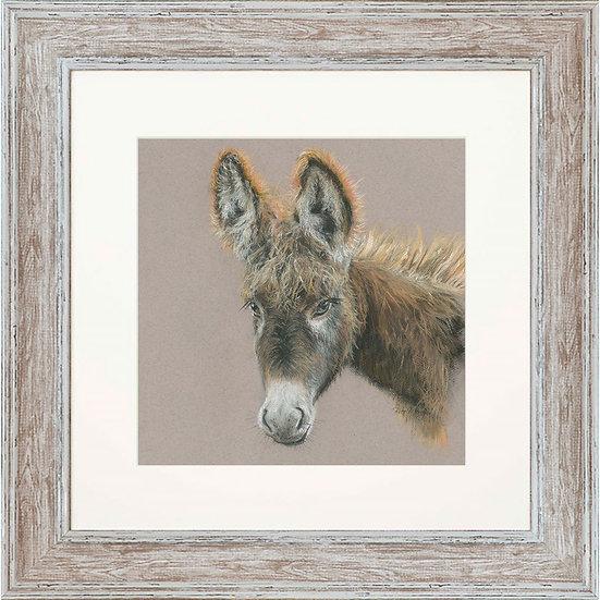 Delores Donkey 48cm Square Framed Print