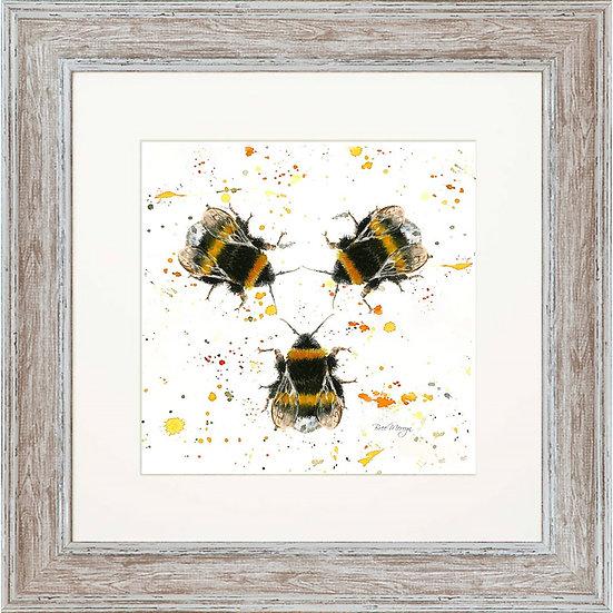 Three Bees 48cm Square Framed Print