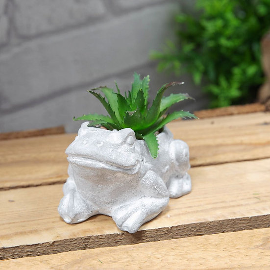 Mini Cement Frog Planer with succulent