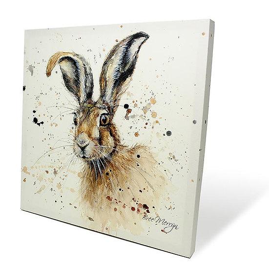 Hugh Hare 40cm Box Canvas
