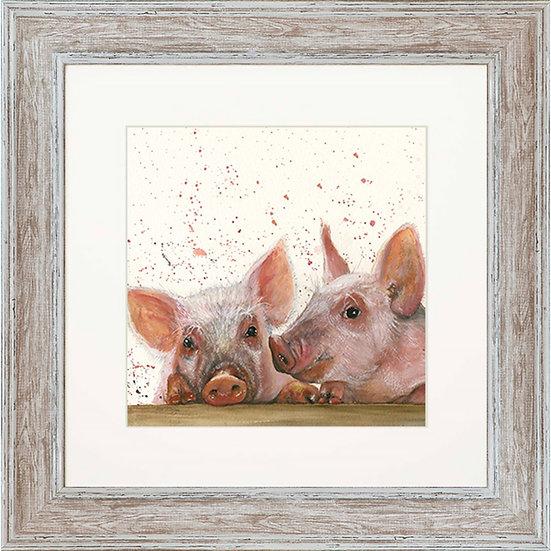 Purdey & Peyton Pigs 48cm Square Framed Print