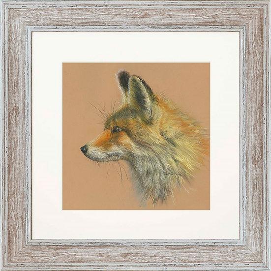 Fabian Fox 48cm Square Framed Print