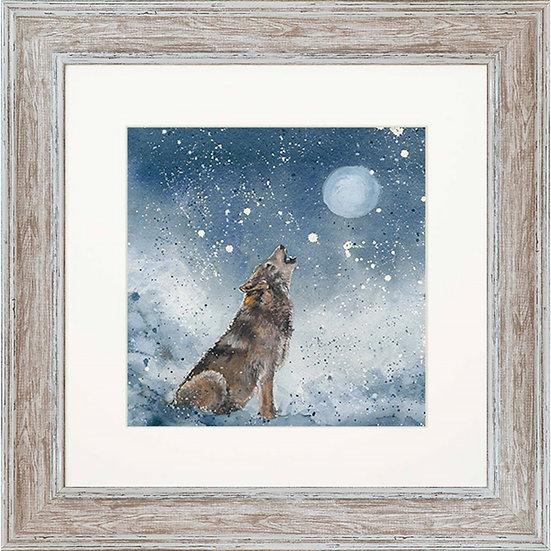 Wyatt Wolf 48cm Square Framed Print