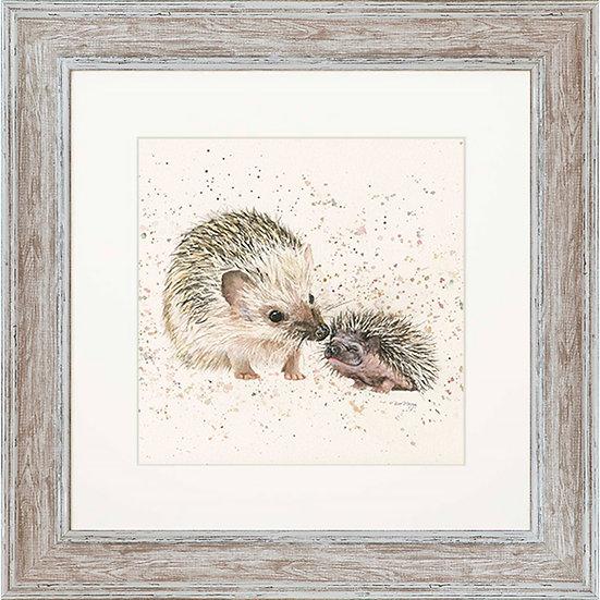 Branston & Prickles Hedgehogs 48cm Square Framed Print
