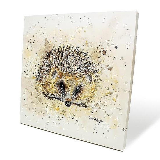 Harley Hedgehog 40cm Box Canvas