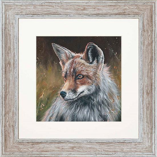 Flint Fox 48cm Square Framed Print