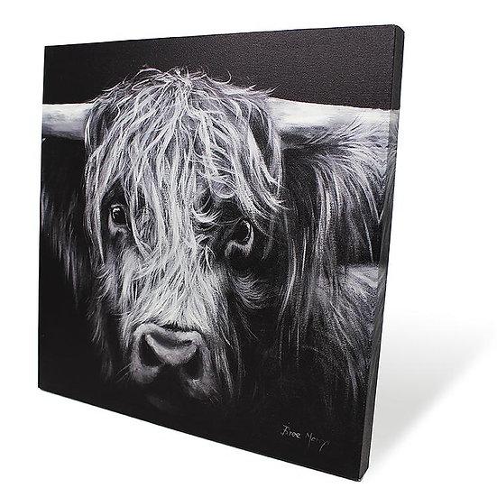 Hamish Cow 40cm Box Canvas