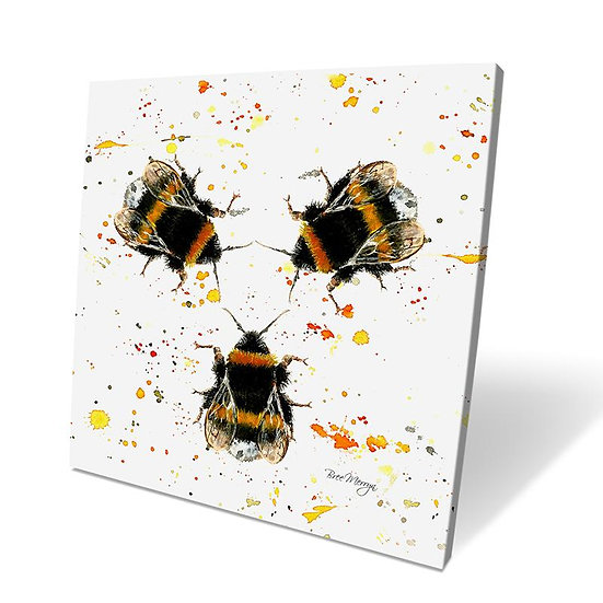 Three Bees 40cm Box Canvas