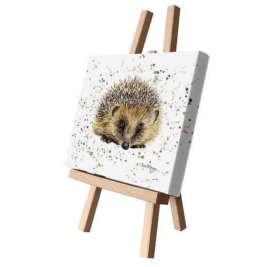 Harley Hedgehog Canvas Cutie
