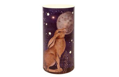 Gazing Hare LED light