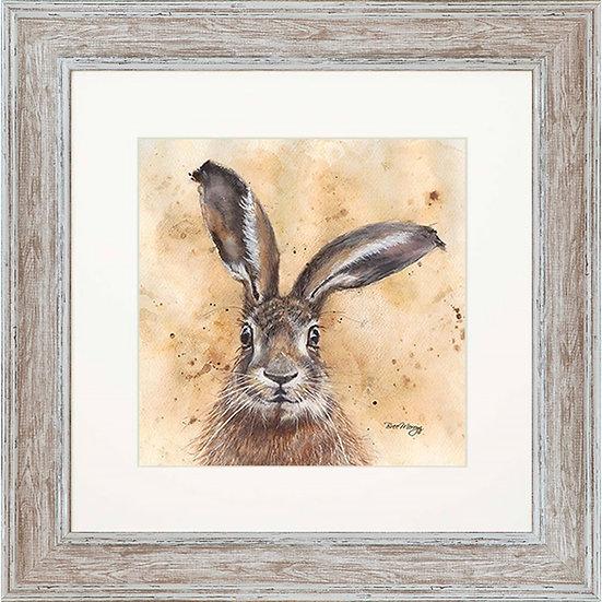 Horatio Hare 48cm Framed Print