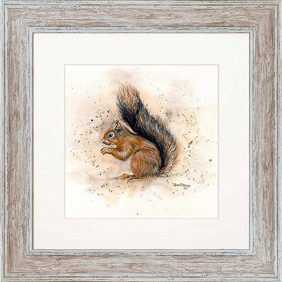 Sunny Squirrel 48cm Framed Print