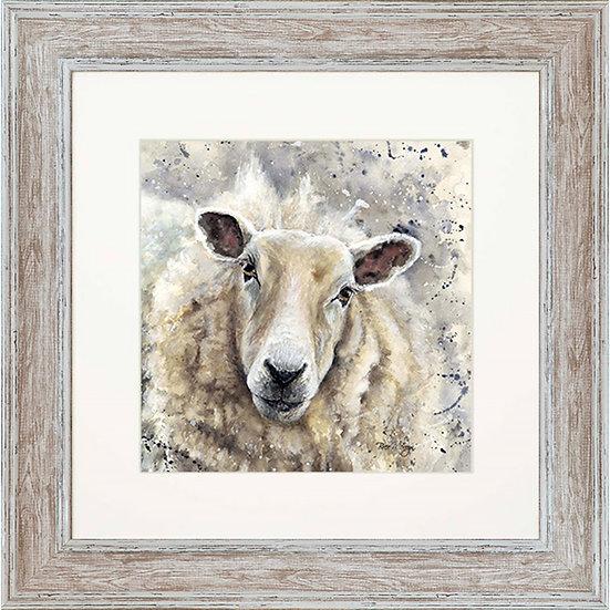 Sheila Sheep 48cm Square Framed Sheep